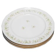 Johann Haviland Bavaria Forever Spring Dinner Plates Set of Three