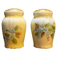 Hand Painted Porcelain Salt Pepper Shakers Blue Flowers