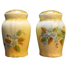 Hand Painted Porcelain Salt Pepper Shakers Blue Flowers