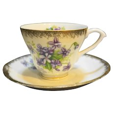 Violets Decorated Porcelain Cup & Saucer Airbrushed Gold Trim