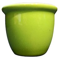 Hall Lime Spring Green Custard Cup