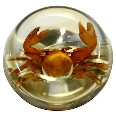 Crab Embedded Lucite Disc Pin Brooch