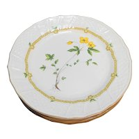 Mikasa Royalty Ivory China Dinner Plates Set of