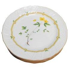 Mikasa Royalty Ivory China Dinner Plates Set of