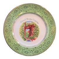 Natural Bridge Virginia Enco Views of American Souvenir Plate