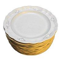 Pfaltzgraff Heirloom Dinner Plates Used Set of 11