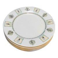 Pfaltzgraff Naturewood Dinner Plates Set of 7