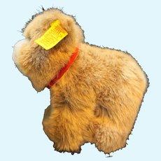 """Steiff Browny Bear 1445/12 4"""""""