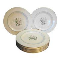 Pickard China Fantasy 1069 Salad Plates Set of 8