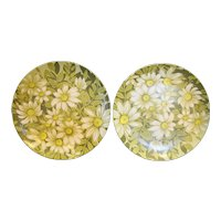 Beverly by Prolon Green White Daisies Flower Power Melmac Plates