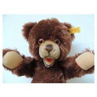 Steiff Bear Bruno
