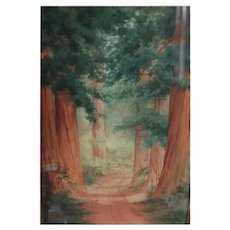 Antique 1891 California Redwood Watercolor Painting Amy Bell Delappe Landscape Art