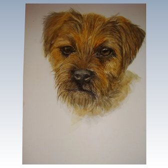Water color picture of BordertTerrier fo framing