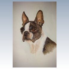 Water color painting of French bulldog for framing up