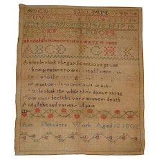 Sampler by Ann Fletchers age 12 1802