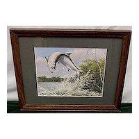 Framed Tarpon Fish Print By Maynard Reece Color Fish Print Outdoors Fishing