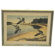 Framed Print by Churchill Ettinger Canadian Geese Hunting And Fishing Vermont Artist