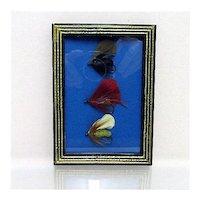 Set of Three Fly Fishing Flies Framed