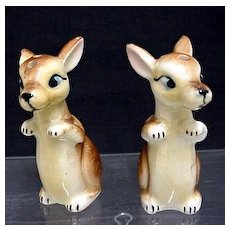 Joey Pair of Kangaroos Salt and Pepper Shakers