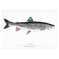 Fly Fishing Print Lake Trout