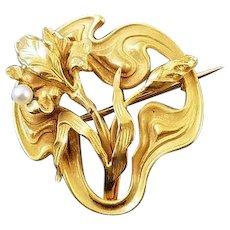 Antique Edwardian Art Nouveau 14k bloomed gold seed pearl iris flower brooch pin hook back seed pearl / watch pin