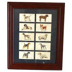Vintage Cigarette Cards Framed Dog Series c.1930
