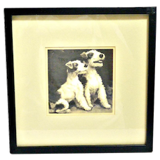 Pair of Fox Terrier Pups Vintage Photograph Framed Under Glass