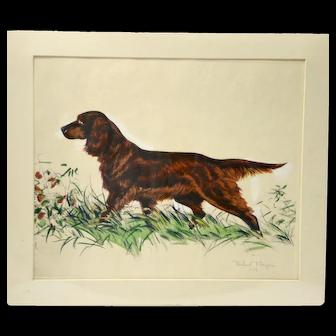 Limited Edition Lithograph of Irish or Gordon Setter Dog Richard Thompson (1914-1991)