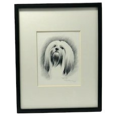 Lhasa Apso Dog Pencil Portrait Artist-Signed