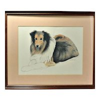 Original Pastel Collie Portrait Artist -Signed