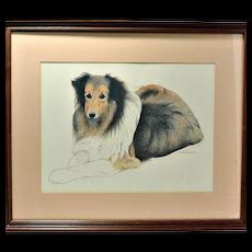 Original Pastel Collie Portrait Artist -Signed