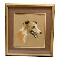 Vintage Original Whippet Dog Portrait