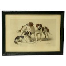 Hunting Dog Portrait Antique Print C. Reichert c. early 1900's