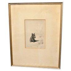 """Marguerite Kirmse  Etching """"Fuzzy Wuzzy"""" Scottish Terrier"""