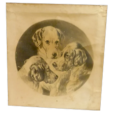 "19th Century Print ""Three Pals"" Hunting Dog Portrait c.1901"