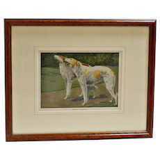 Antique  Framed Art Print Russian Wolfhound Dogs c.1919