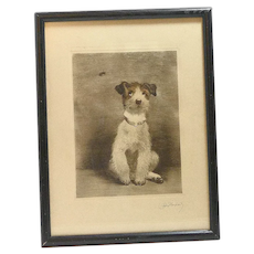 Vintage Wire-Haired Fox Terrier Dog Portrait Signed Kurt Meyer-Eberhardt