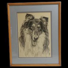 Original Pen & Ink Collie Dog Portrait Framed
