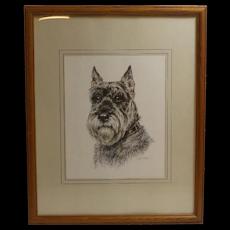 Original Schnauzer Dog Portrait - Artist Signed