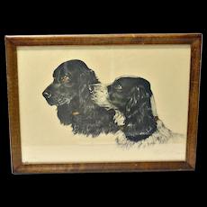 Cocker Spaniel Dogs Etching Paul Wood c.1935