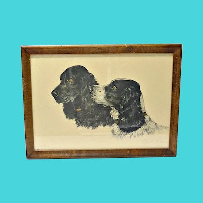 Cocker Spaniel Dogs Etching Paul Wood c.1935