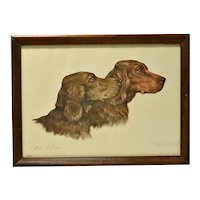 Irish Setter Dogs Etching Paul Wood c.1935