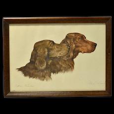 Irish Setter Dogs Etching Paul Wood c.1935