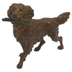 Austrian Cold-Painted Bronze Springer Spaniel with Glass Eyes c.1920's