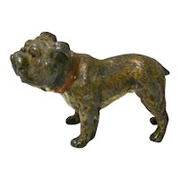 Antique Cold Painted Austrian Bronze Bulldog late 19th century