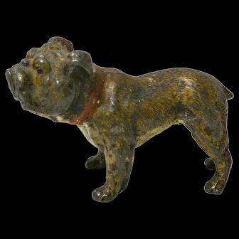 Antique Cold Painted Austrian Bronze Bulldog late 19th century