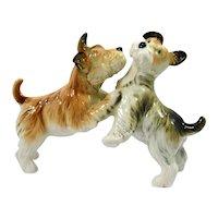 Vintage Karl Ens Porcelain Fox Terrier Dog Pair