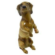 Hutschenreuther Porcelain Begging Dachshund Dog