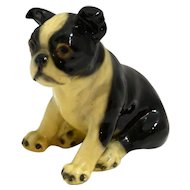 Vintage Mortens Studio Sitting Boston Terrier Puppy Dog c. 1930's-1940's