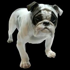 Rosenthal Large Bulldog Figurine F. Diller c.1917-1920's